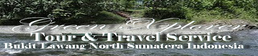Trekking Safari Bukit Lawang Jungle  l Green Xplorer l Bukit Lawang  l  North Sumatera - Indonesia