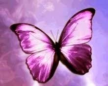 Μια πεταλούδα από την ΕΚΦΡΑΣΟΥ