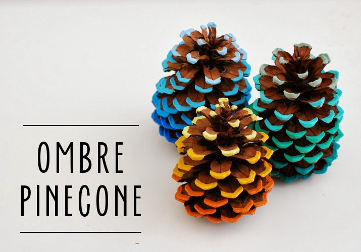 DIY Friday: Ombre Pinecone Tutorial
