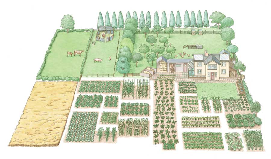 The olde barn 1 acre farm layout Small farm plans layout