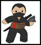 I am a Writing Ninja