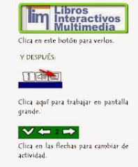 Instrucciones LIM :