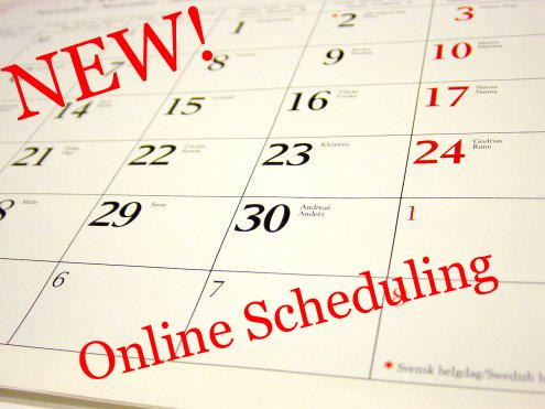 New Online Scheduling