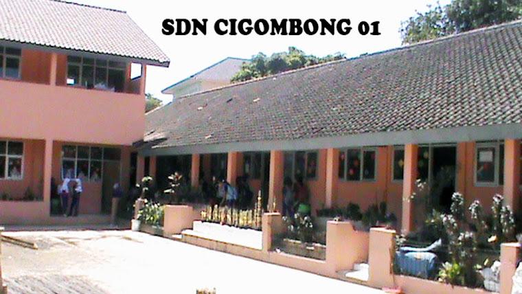 SDN CIGOMBONG 01