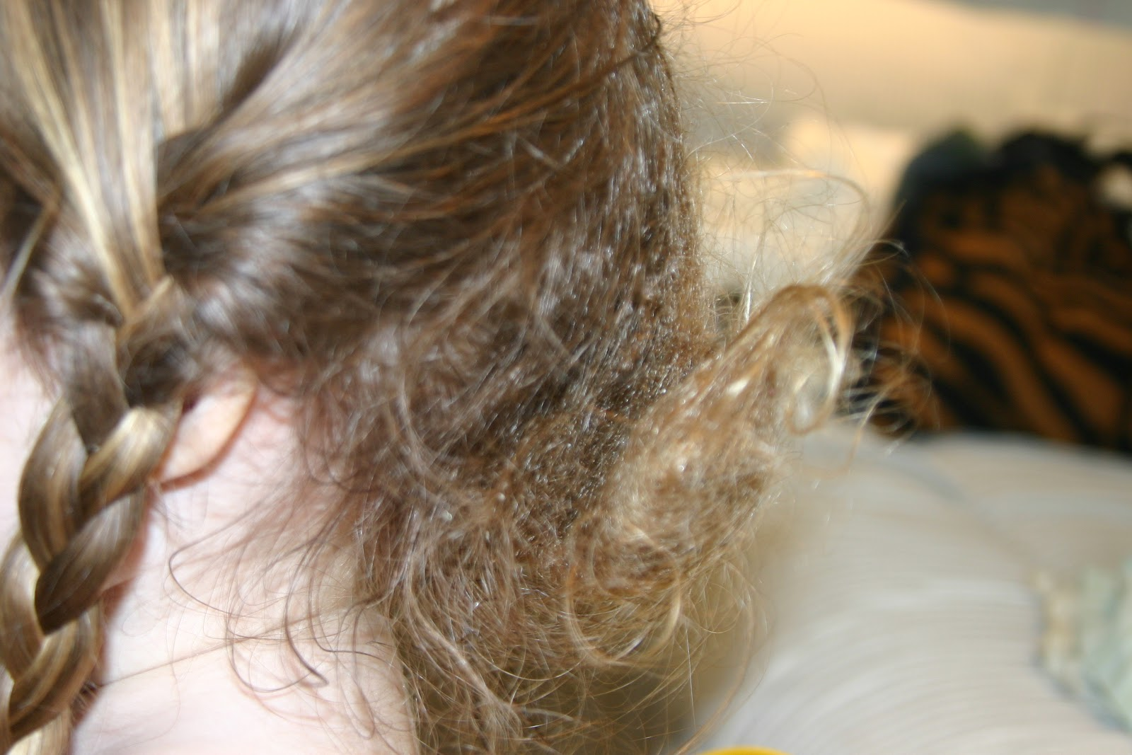 Matted Curly Hair Tangled Hair Techs Horrible
