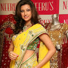 Hamsa Nandini in Saree   Cute Photos