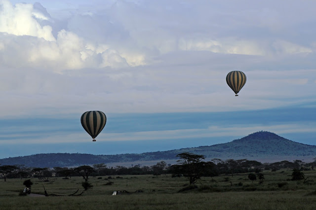 Buy stretched canvas print of Balloons over the Serengeti