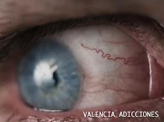 MARIHUANA, CANNABIS, TOLERANCIA CERO, DROGAS AL VOLANTE, ADICCIONES, DEJAR LOS PORROS EN VALENCIA