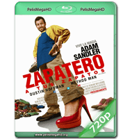 ZAPATERO A TUS ZAPATOS (2014) WEB-DL 720P HD MKV INGLÉS SUBTITULADO