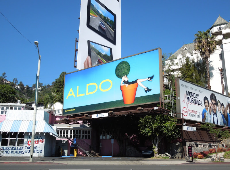 Aldo Shoes flower pot billboard