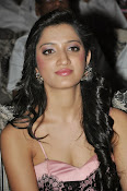 Richa panai latest glam pics-thumbnail-20