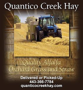 Quantico Creek Hay