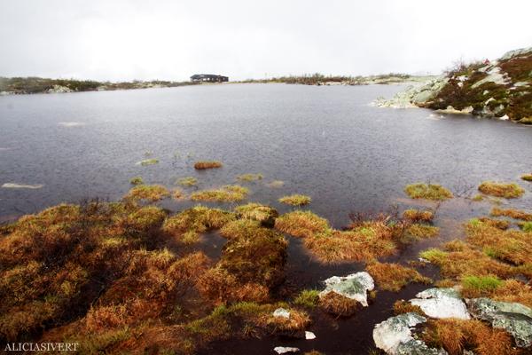 aliciasivert, alicia sivertsson, alicia sivert, fjällvandring, vandra i fjäll, fjällen, fjällvandra, vemdalen, vemdalsskalet, hike, hiking in sweden, härjedalen, norrland, sverige, varggranshågna, varggranssjön, varggranssjön