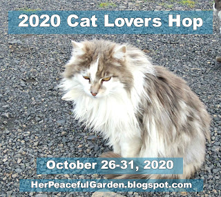Cat Lovers Hop 2020