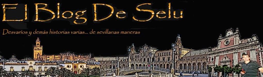 El Blog De Selu