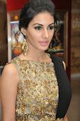 Amrya dastur glamorous photos-thumbnail-19