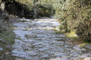Cañada Real a su paso por Parrillas