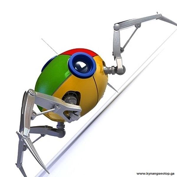 Bots theo khi click link và cách giúp website nhanh index