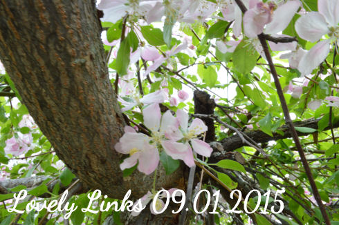 Lovely Links 09.01.2015 | seriously-lovely.blogspot.com