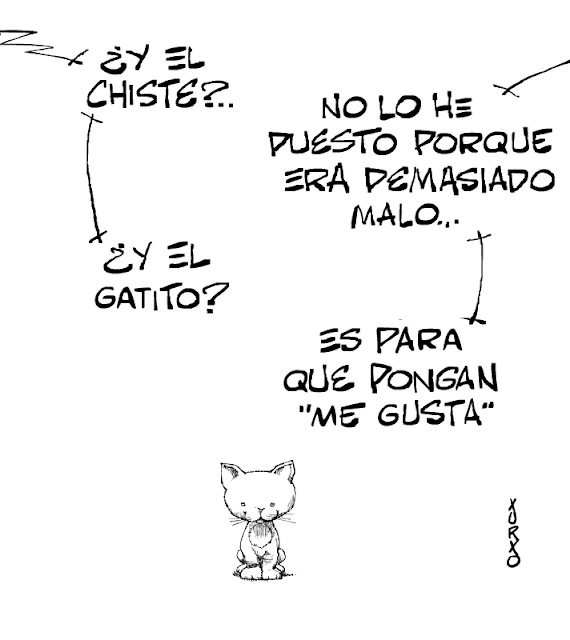 viñeta humoristica con un gatito