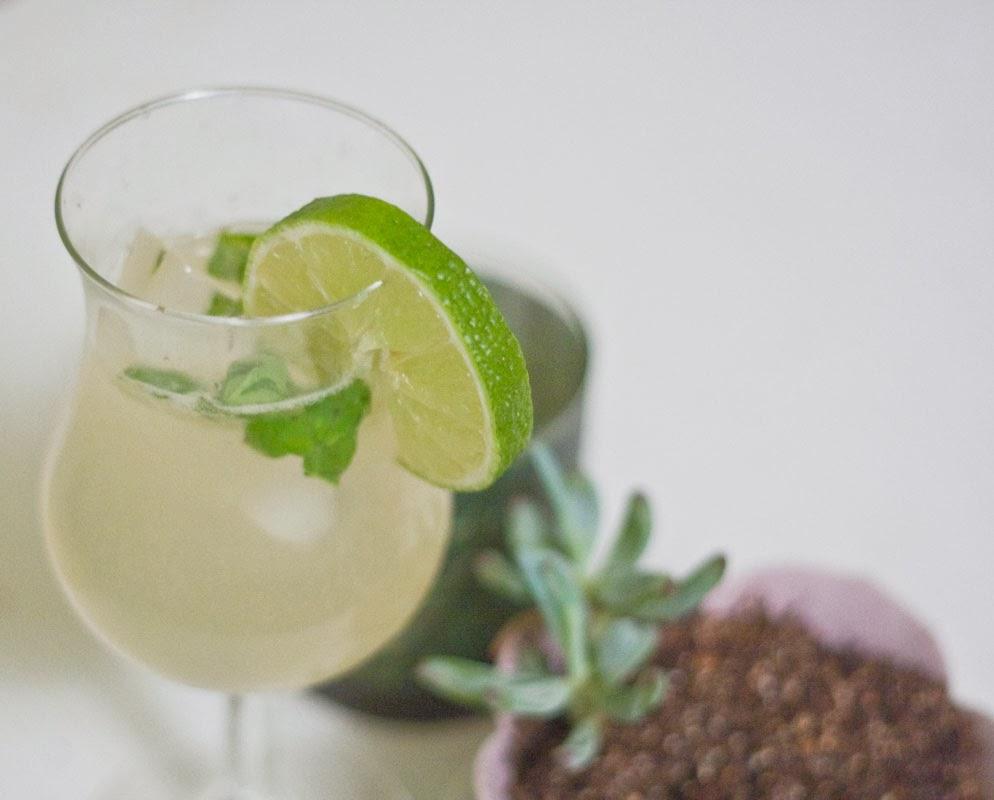 Aloe vera lime basil mojito