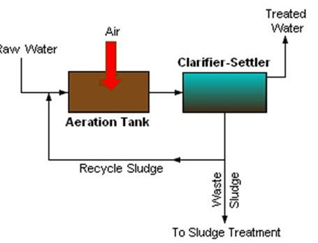 an analysis of the organic effluent and the main pollutants in the sewage system A typical sewage treatment plant (stp) is limited for organic and nutrient removal from municipal sewage water suspended solids (ss) are also one of the main targets to remove from wastewater.