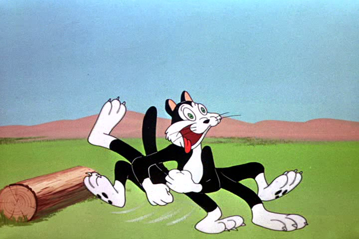 Gambling bug looney tunes countries where online gambling is illegal