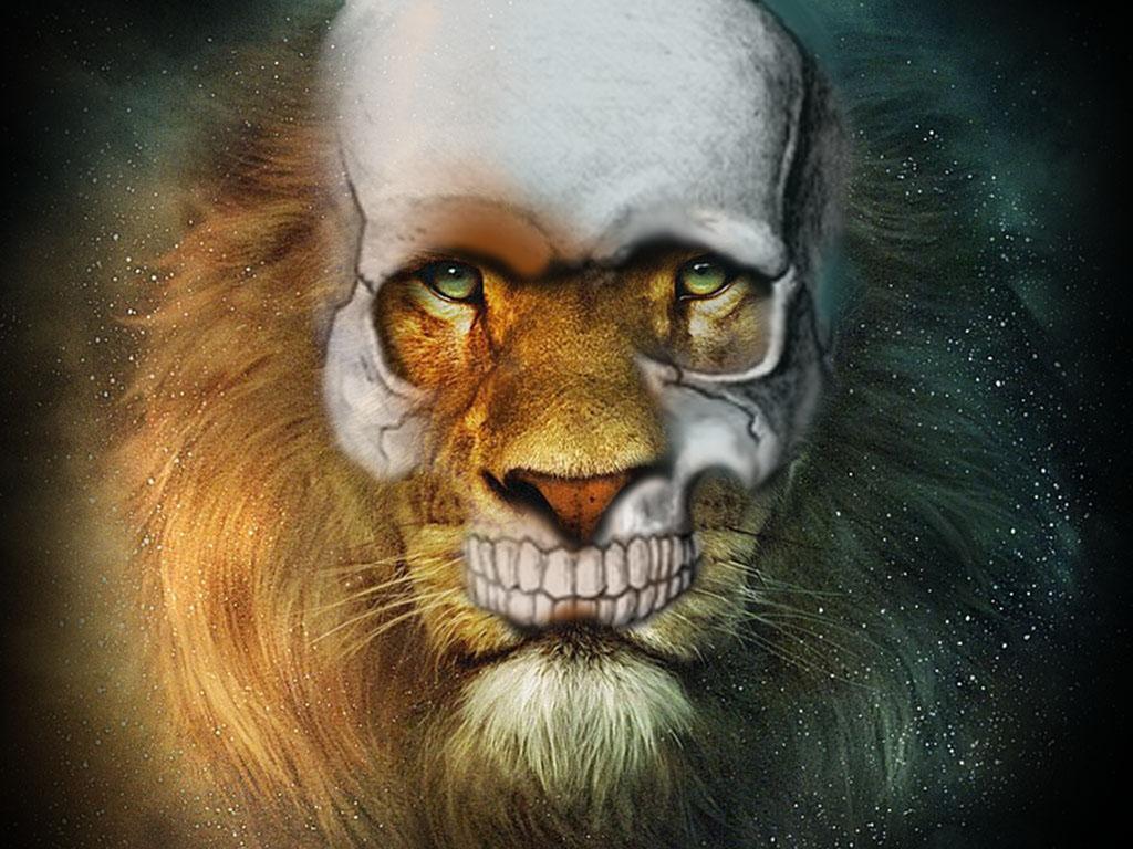 http://4.bp.blogspot.com/-T3sm1VpzBHc/TnixSWf9C-I/AAAAAAAAASo/491TyYc7uWM/s1600/lion+skull+wallpaper.jpg