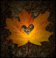 Autumn Hearts1