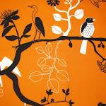 Tela - Pájaros Naranja