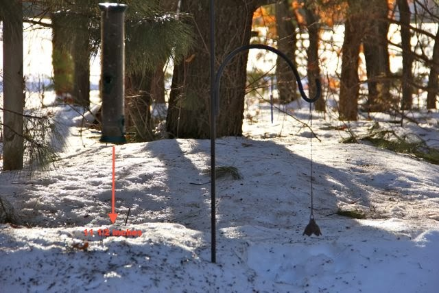 March 10, 2014: 11 1/2 inch gap under the feeder