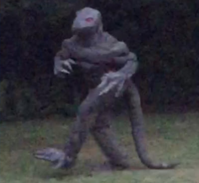 http://beforeitsnews.com/paranormal/2015/08/south-carolina-woman-reports-sighting-of-lizard-man-captures-photo-evidence-video-2493748.html