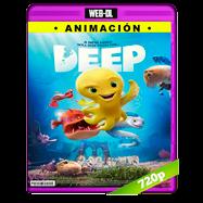 Deep, el pulpo (2017) WEB-DL 720p Audio Dual Latino-ingles