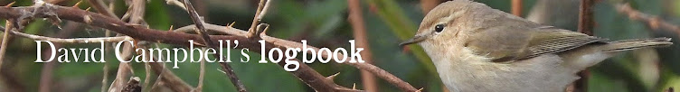 David Campbell's logbook