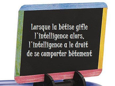 Citation sur l'intelligence en image