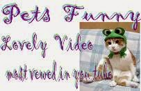 Pets funny & lovely video most viewed in you tube