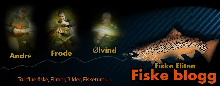 Fiskeblogg