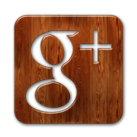 Check Criminal Record Google Plus