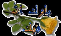Gambar Animasi Tulisan Islami Bergerak