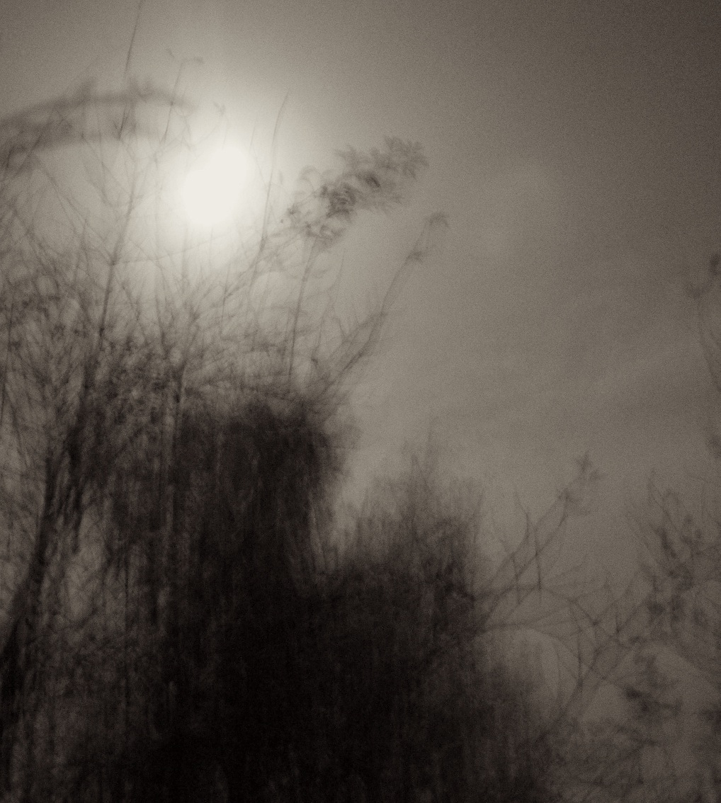 opus lunae