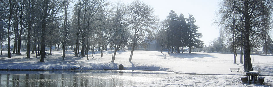 La Sologne en hiver !