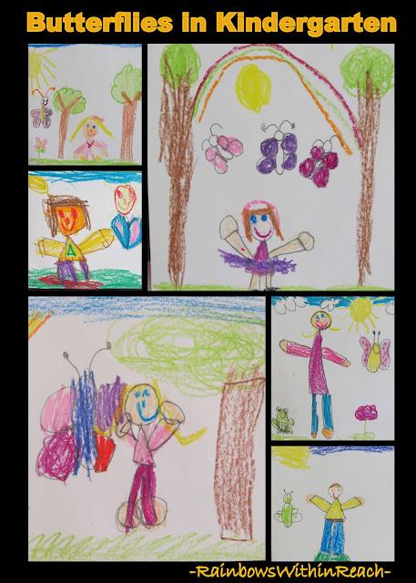 photo of: Kindergarten Bulletin Board of Spring Butterfly Drawings