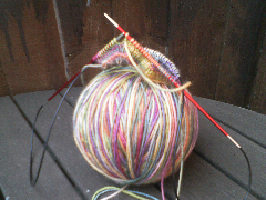 Zing circular needle and yarn, knitting sock