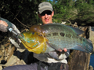 Alejandro Linares with a super size Turquoise Cichlid. This fish is