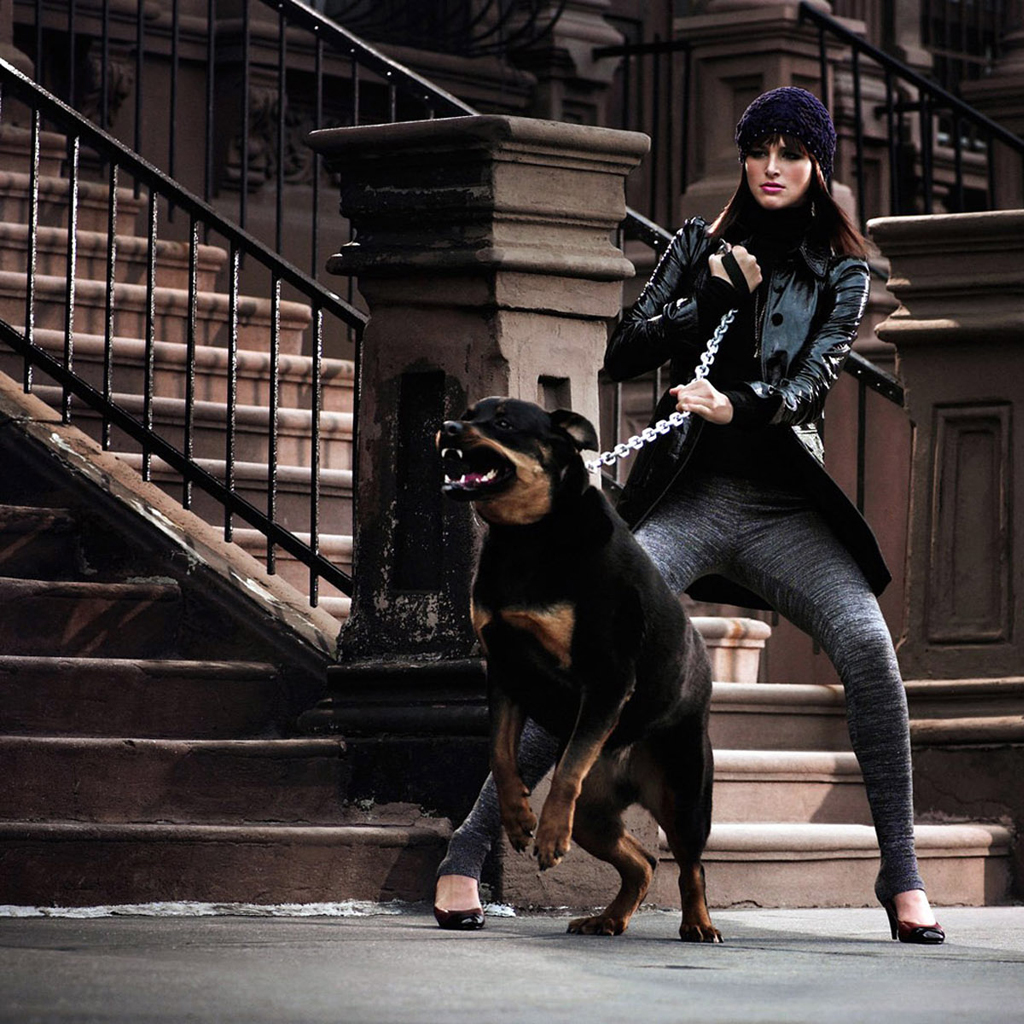 Angry Dog Rottweiler Wallpapers And Images Wallpaper Imgkidcom The Image