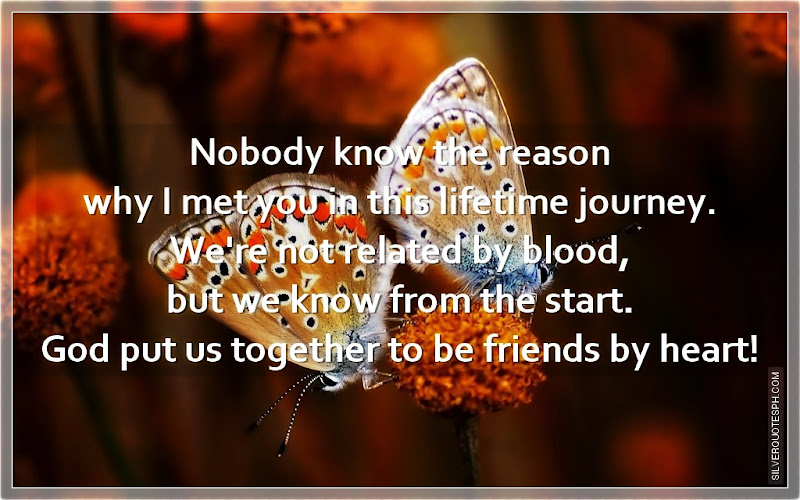 Nobody Know The Reason Why I Met You In This Lifetime Journey, Picture Quotes, Love Quotes, Sad Quotes, Sweet Quotes, Birthday Quotes, Friendship Quotes, Inspirational Quotes, Tagalog Quotes