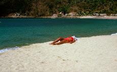 Lone Red Bikini 1964