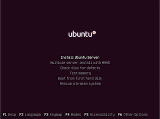 Ubuntu server 12.10 installation screen