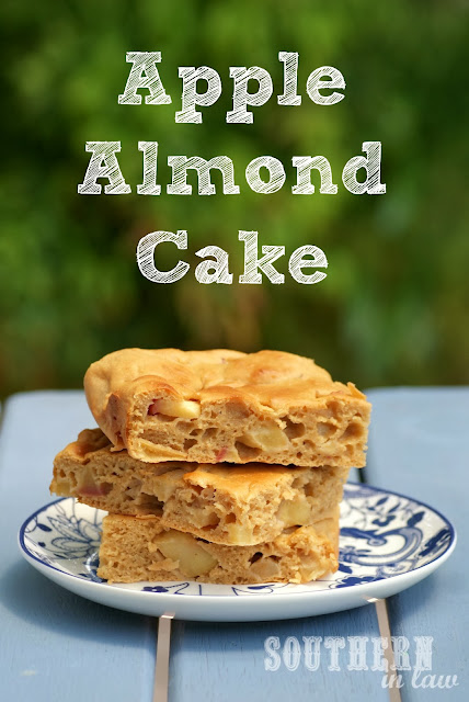 Gluten Free Apple Almond Meal Cake - Healthy, Low Fat, Sugar Free