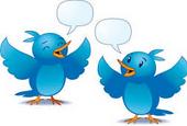 Twitter'a Anket Özelliği Geldi!